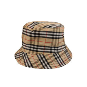 כובע טמבל סדרה חברים