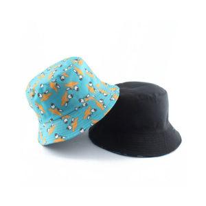 כובע טמבל פרי פלטיפוס 1